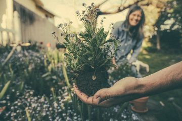 Jardinage pour les séniors, une source de bien-être